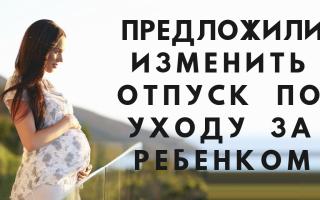 В России отпуск по уходу за ребенком задумали изменить