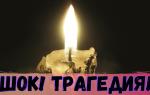 ШОК! Житель Брянской области убил свою жену на глазах маленкой дочери.