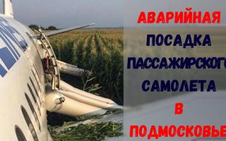 Авария самолета Airbus A-321 в Подмосковье